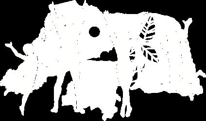 NU-RN